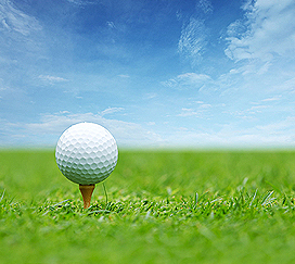Golf - Wagner Realty Team